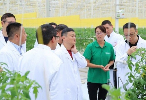 Jack Ma in Green House igrow (igrow.news)